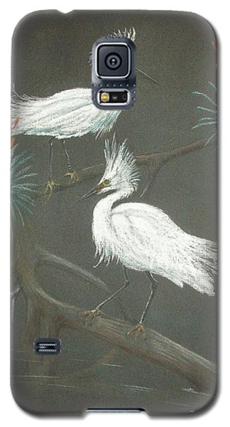 Swampbirds Galaxy S5 Case