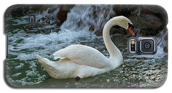 Swan A Swimming Galaxy S5 Case