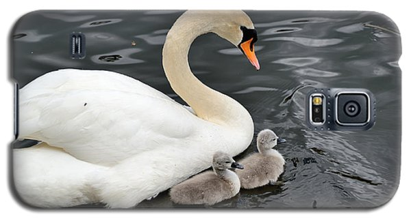 Galaxy S5 Case featuring the photograph Swan And Cygnets by Kathy King