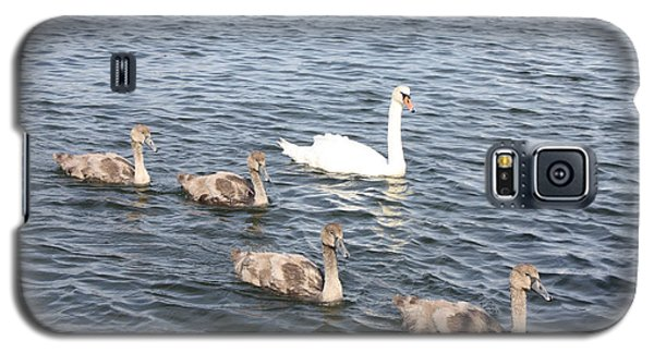 Galaxy S5 Case featuring the photograph Swan And His Ducklings by John Telfer