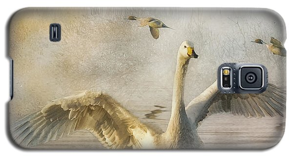 Galaxy S5 Case featuring the photograph Swan At Sundown by Brian Tarr