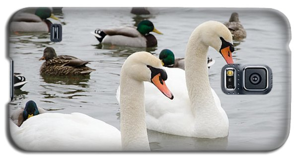 Swan Couple Galaxy S5 Case