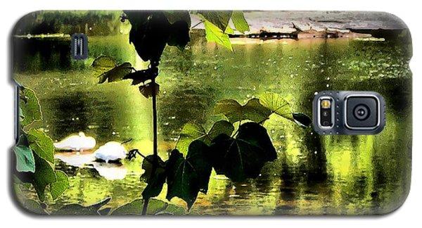 Swan Dive Galaxy S5 Case