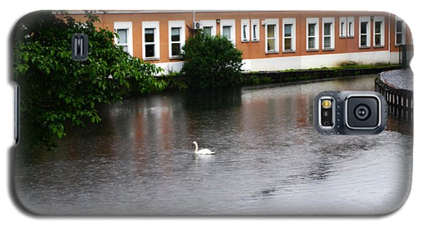 Swan In Dublin Galaxy S5 Case