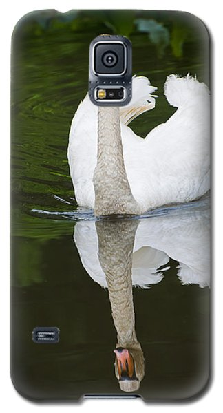 Galaxy S5 Case featuring the photograph Swan In Motion by Gary Slawsky
