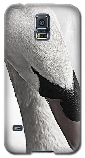 Galaxy S5 Case featuring the photograph Swan Lake Showdown... by Tammy Schneider