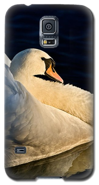 Swan On Lake Galaxy S5 Case