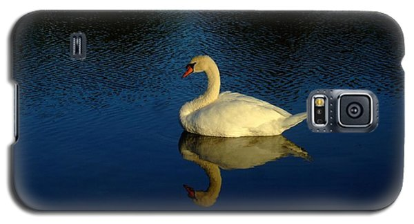 Swan Reflection Galaxy S5 Case by Bob Sample