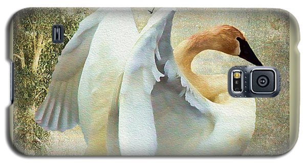 Swan - Summer Home Galaxy S5 Case by Kathy Bassett