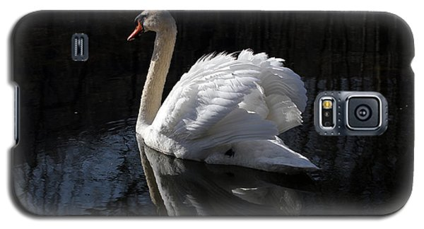 Galaxy S5 Case featuring the photograph Swan With Reflection  by Eleanor Abramson