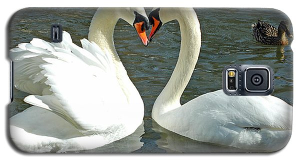 Galaxy S5 Case featuring the photograph Swans At City Park by Olivia Hardwicke