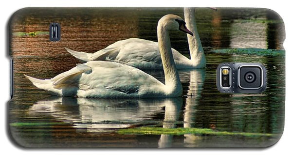 Swans Cruising Galaxy S5 Case by Rick Friedle