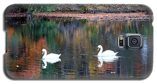Galaxy S5 Case featuring the photograph Swans by Karen Silvestri