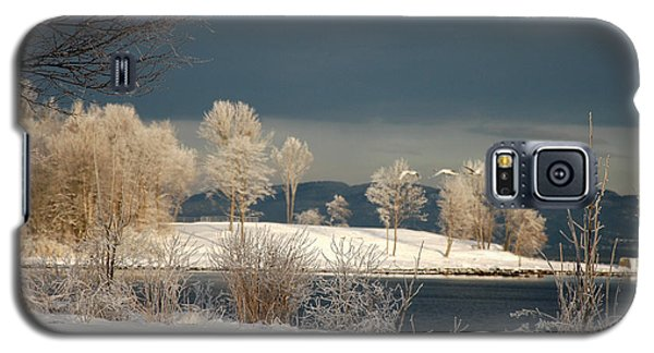 Galaxy S5 Case featuring the photograph Swans On A Frosty Day by Randi Grace Nilsberg
