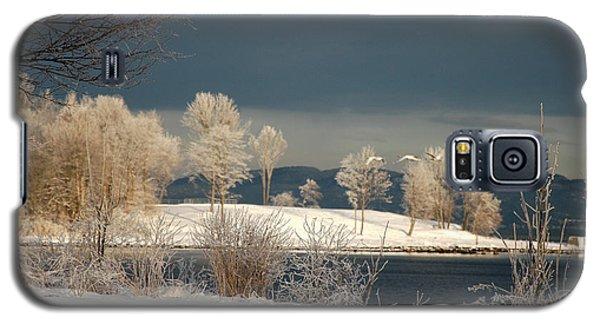 Swans On A Frosty Day Galaxy S5 Case by Randi Grace Nilsberg