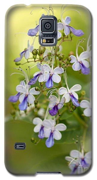 Sweet Butterfly Flowers Galaxy S5 Case