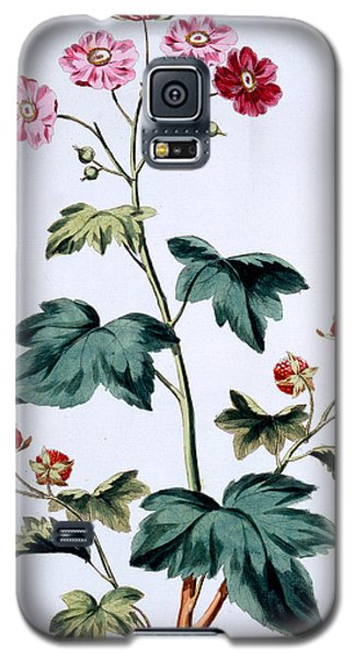 Sweet Canada Raspberry Galaxy S5 Case by John Edwards