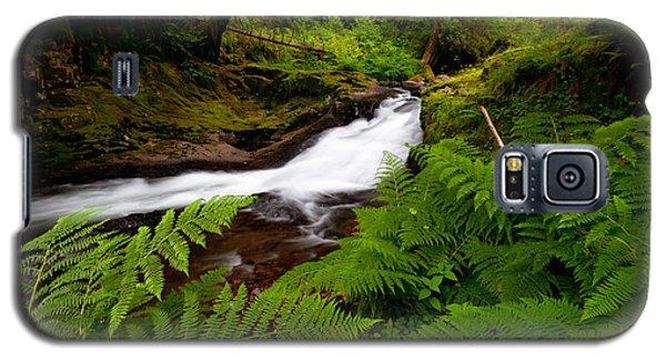 Sweet Creek Ferns Galaxy S5 Case
