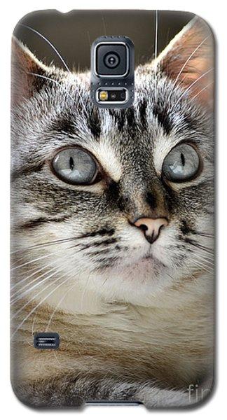 Sweet Innocence Galaxy S5 Case