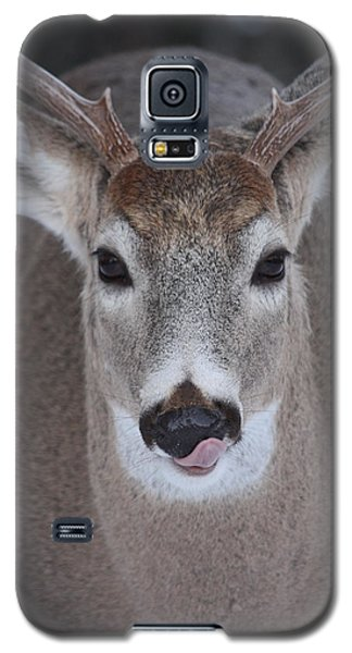 Galaxy S5 Case featuring the photograph Sweet Lips by Rita Kay Adams