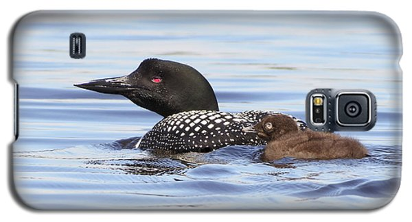Sweet Loons Galaxy S5 Case
