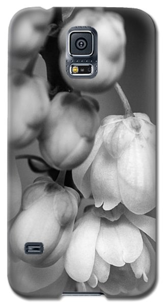 Galaxy S5 Case featuring the photograph Sweet Mahonia Bloom by Patricia Schaefer