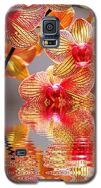 Sweet Orchid Reflection Galaxy S5 Case by Judy Palkimas