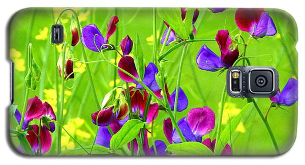 Galaxy S5 Case featuring the photograph Sweet Peas by Byron Varvarigos