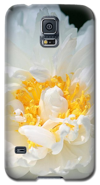 Galaxy S5 Case featuring the photograph Sweet Peony by The Art Of Marilyn Ridoutt-Greene