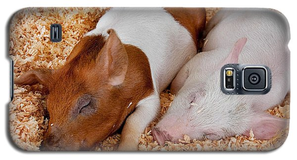 Galaxy S5 Case featuring the photograph Sweet Piglets Nap by Valerie Garner