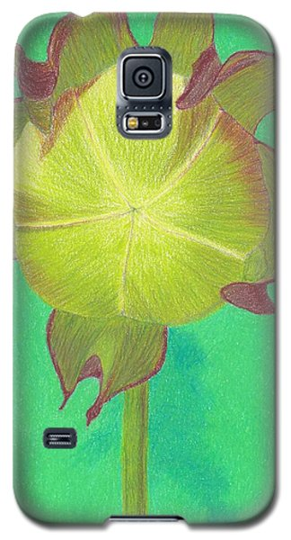 Galaxy S5 Case featuring the drawing Sweet Pitcher Plant by Sheila Byers