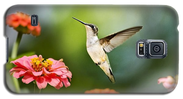 Galaxy S5 Case featuring the photograph Sweet Promise Hummingbird by Christina Rollo