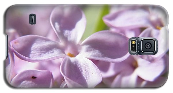 Galaxy S5 Case featuring the photograph Sweet Scent Of Spring by Agnieszka Ledwon