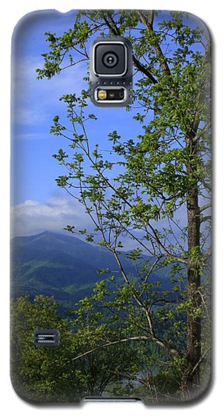 Galaxy S5 Case featuring the photograph Sweet Springtime On The Blue Ridge Parkway Nc by Mountains to the Sea Photo