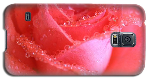 Sweetest Rose Galaxy S5 Case by The Art Of Marilyn Ridoutt-Greene