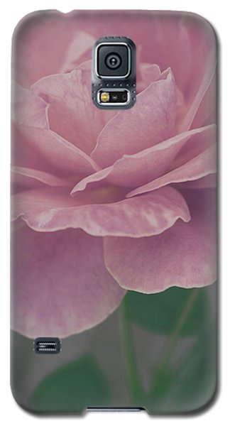 Sweetly Galaxy S5 Case
