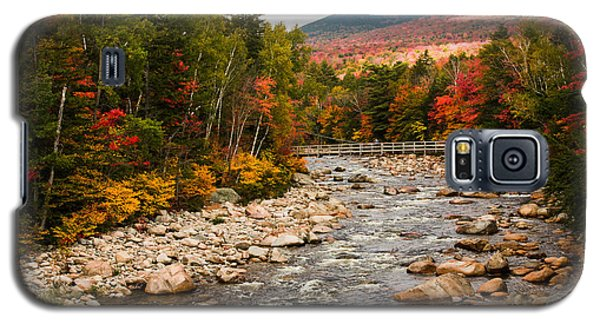 Swift River Painted With Autumns Paint Brush Galaxy S5 Case