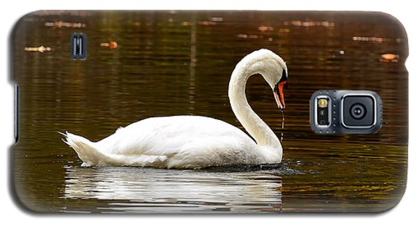 Swim And Grace Galaxy S5 Case by Lourry Legarde