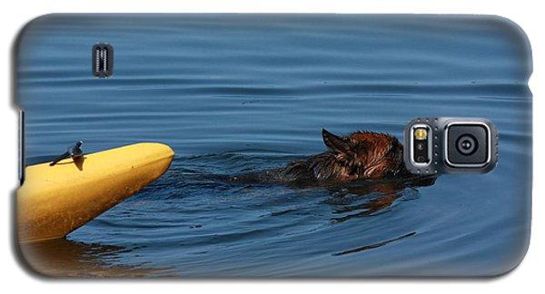 Swimming Anna B Galaxy S5 Case by Pat Purdy