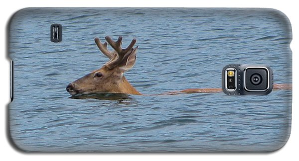 Swimming Deer Galaxy S5 Case by Leone Lund