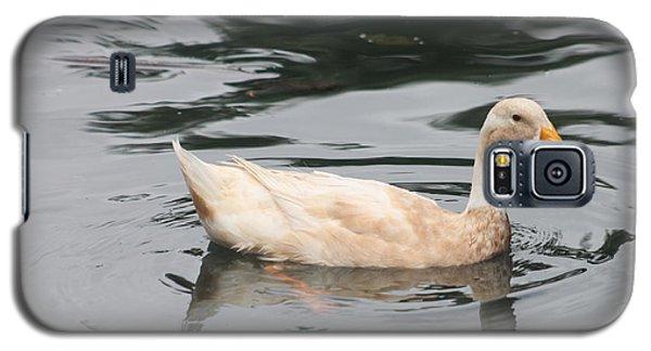 Swimming Duck Galaxy S5 Case by Pamela Walton