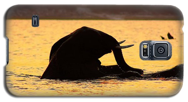 Galaxy S5 Case featuring the photograph Swimming Kalahari Elephants by Amanda Stadther
