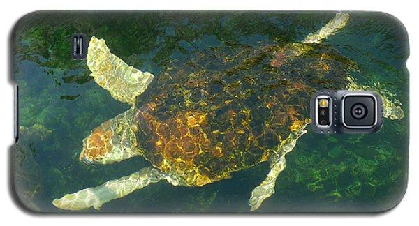 Swimming Turtle Galaxy S5 Case