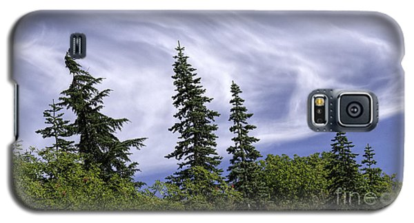 Swirling Clouds Crooked Trees Galaxy S5 Case