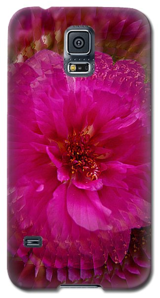 Galaxy S5 Case featuring the photograph Swirls Of Pink by Judy  Johnson