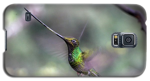 Sword-billed Hummingbird Hovering Ecuador Galaxy S5 Case