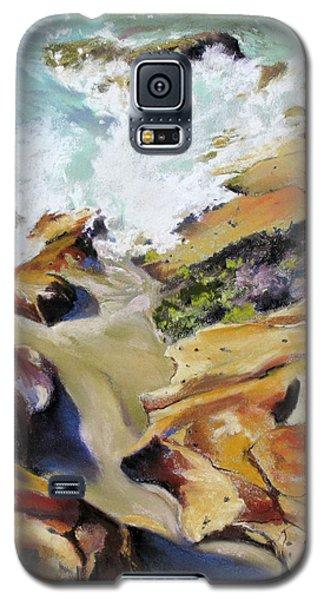 Sydney Shoreline Galaxy S5 Case by Rae Andrews
