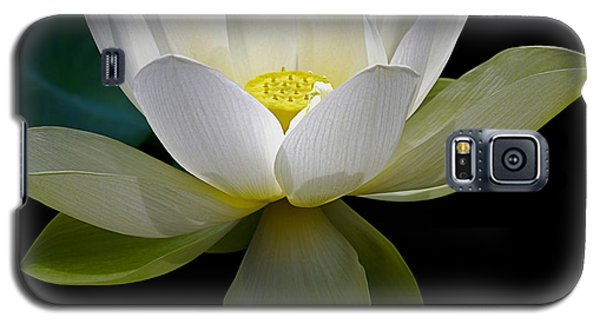Symbolic White Lotus Galaxy S5 Case