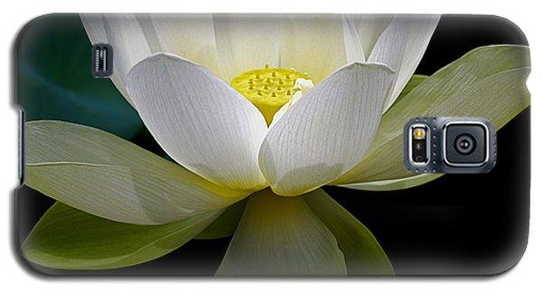 Symbolic White Lotus Galaxy S5 Case