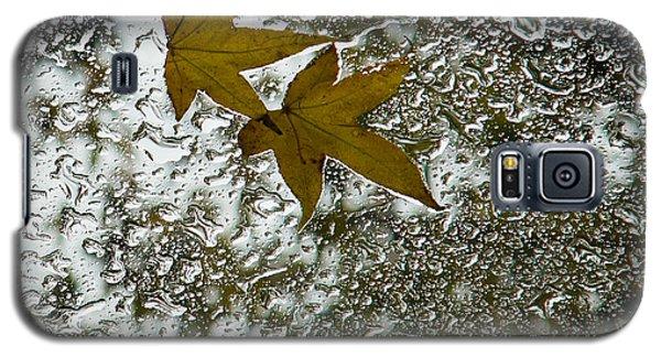 Symbols Of Autumn  Galaxy S5 Case